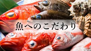 魚へのこだわり